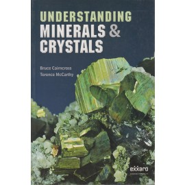 Understanding minerals and crystals (9781431700844)