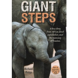 Giant Steps: A True story from Africa about exploitation and the true meaning of freedom